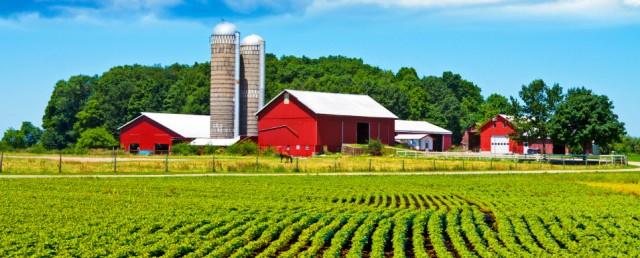 FindAFarm, Find A Farm, FINDAFARM.COM